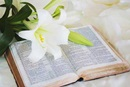 Easter Lilly and Bible